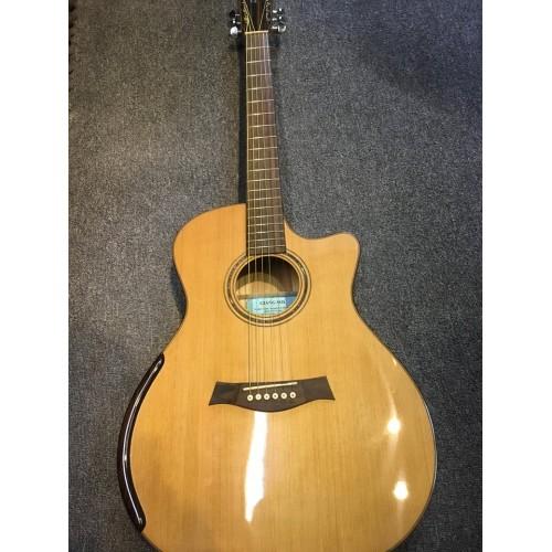 Guitar Acoustic GS AK T200