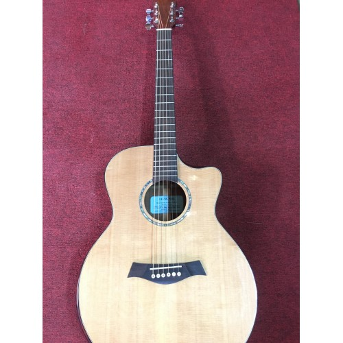 Guitar Acoustic GS HD20