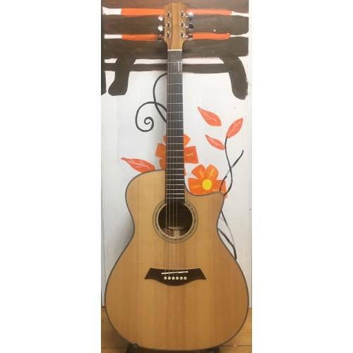 Guitar Acoustic M50