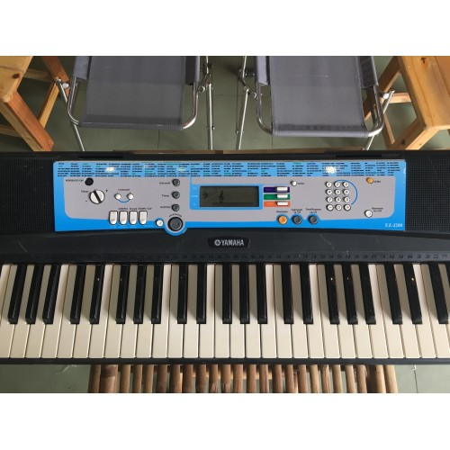 Organ Casio EZ-J200
